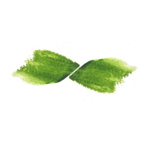 De Groene Artisanen