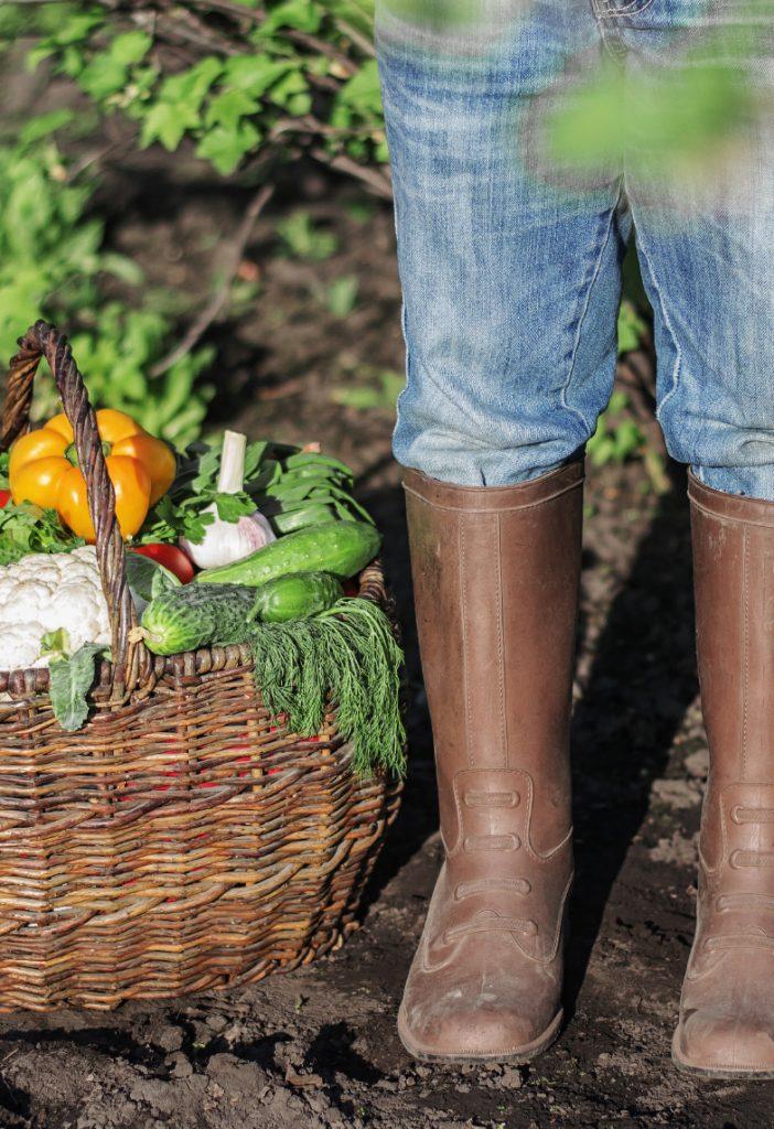 Lokaal van de streekboerderij | filosofie De Groene Artisanen