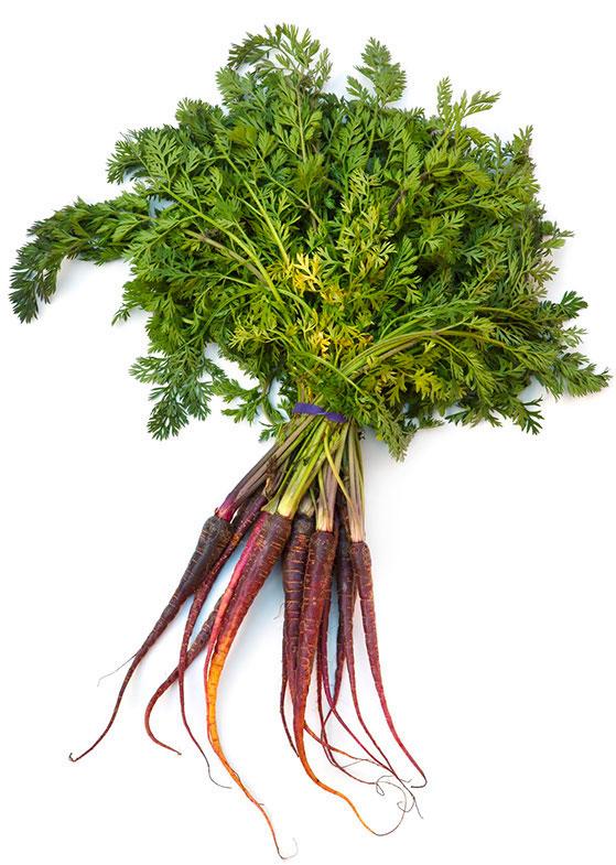 Wortel De Groene Artisanen | Green Food Catering | Bedrijfscatering