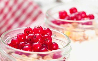Soja Yoghurt met jam en rode bessen